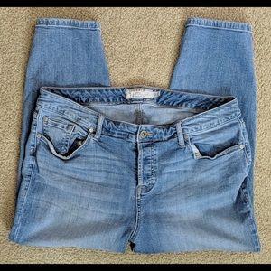 Pants - Torrid 16s Jeans
